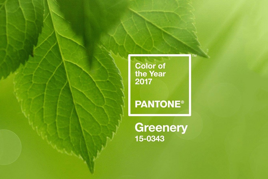 Decora con el color del 2017: GREENERY