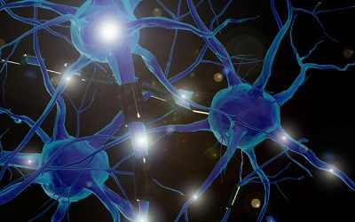 ¿Qué es la neuroarquitectura?